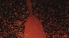 Lava Lamp Macro Abstract Liquid Motion Variation One Stock Footage