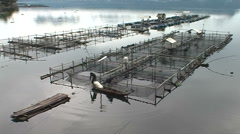 Fishermen catch fish traps empty Stock Footage