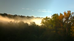 View of forest at sunrise in Arkansas, USA - stock footage