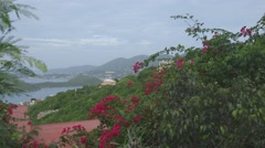 View of mountain in British Virgin Islands Stock Footage