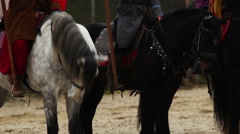 Beautiful horses with riders standing before an old fortress, Middle Ages Stock Footage