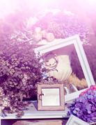 Photo frames as a decoration in the garden - stock photo