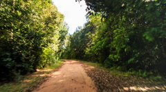 Camera Moves along Shadow Ground Road in Tropical Forest Stock Footage