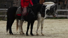 The Middle Ages. Envoys horse riders reading aloud a royal decree to villagers Stock Footage