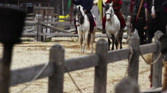 Parade of expensive horse breeds at medieval festival. Horse-riding, slow motion Stock Footage