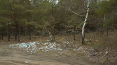 Scattered debris in the forest - stock footage