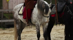 Medieval horserider coming to town with royal flag, envoy bringing news to crowd Stock Footage