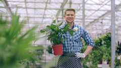 Handsome guy holding flower in greenhouse Stock Footage