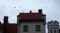 Flying birds from house roof, riga latvia Stock Footage