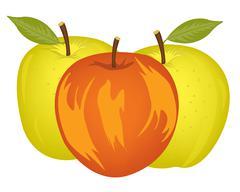 Three apples on white - stock illustration