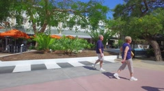 Lincoln Road nature scene Stock Footage