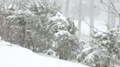 Beautiful winter's idyll - Nature Under Snow on Mountain in Slow Motion - stock footage