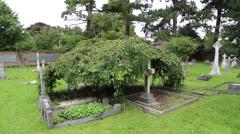 Graveyard at St Nicholas Church,  Chislehurst, Kent, UK Stock Footage