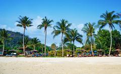 Tropical sand beach - stock photo