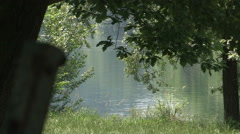 A view of Ticino river through the woods Stock Footage