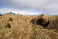 Basalt stones at the cave near Vik, Iceland - stock photo