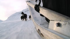 Siberian husky dogs pull sled on the snow in Longyearbyen, Norway. Stock Footage