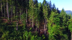 Aerial view of Carpathians mountains Stock Footage
