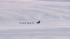 People ride sleds with siberian husky dogs on the snow in Longyearbyen, Norway. - stock footage
