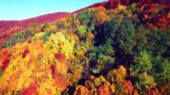 Aerial view of autumn Carpathians mountains - stock footage