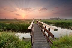 beautiful sunrise over bike bridge in farmland - stock photo