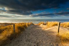 sand path to North sea beach in sunlight - stock photo