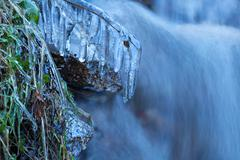 Icicle on grass by river in winter Stock Photos