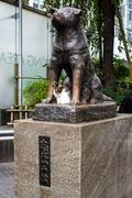 Statue of Hachiko in Tokyo, a symbol of loyalty - stock photo