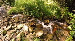 Babbling brook in Nature Area with Sound. UHD video Stock Footage