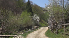 Country road spring time flower blossom tree garden mountain path rural place Stock Footage