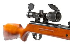 air rifle with a telescopic sight and a wooden butt - stock photo