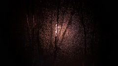 Silhouettes of trees shadow through the raindrops. - stock footage