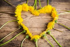 Arrangement of dandelions in the heart shape - stock photo
