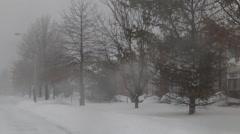 Snow storm jonas  snowstorm Arkistovideo