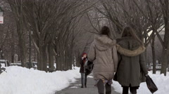 Eastern Parkway in Brooklyn After a Snowstorm Stock Footage