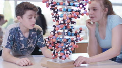 4K Young students looking at model in school science class - stock footage