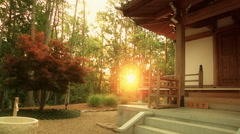 Pan of Pagoda in fujigoko kawaguchiko japan at sunrise Stock Footage
