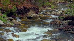 Small waterfall in spring. Rapids in small mountain river flowing in forest. - stock footage
