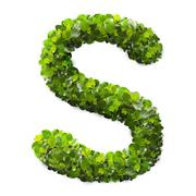 Letter S made of green leaves Stock Photos