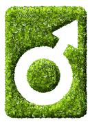 Male Symbol from the green grass. - stock photo