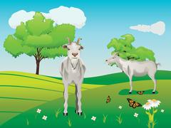 Goat and Green Lawn - stock illustration