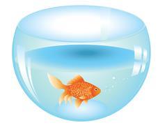 Gold Fish in Aquarium - stock illustration