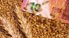 Harvested wheat crop grains price in European Union, conceptual footage Stock Footage