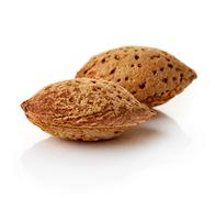 Almonds in shells on white background - stock photo