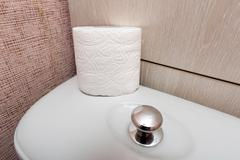 Hygienic Toilet Paper Roll in WC Stock Photos