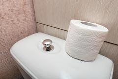 Hygienic Toilet Paper Roll in WC - stock photo