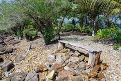 Stock Photo of Old wooden bench in a tropical garden