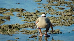 Local Fisherman Catches Small Squid in Tidepools. Video 1920x1080 Stock Footage