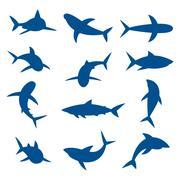 Set of big sharks blue silhouettes. Vector illustration - stock illustration