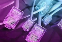 purple ethernet plug background - stock photo